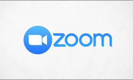 Profiturile Zoom au crescut cu 2.994%