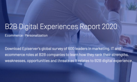 Raport: B2B Digital Experiences Report 2020