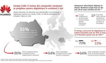 O treime din firmele din România se pregătesc de digitalizare în următorii doi ani