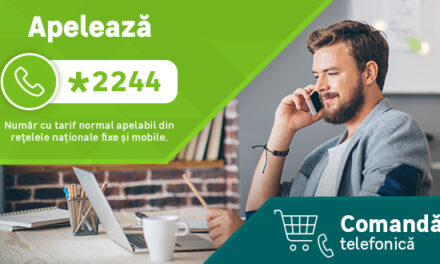 Leroy Merlin: La un an de la lansarea serviciului în România, comenzile telefonice au devenit unul dintre cele mai utilizate canale de cumpărături