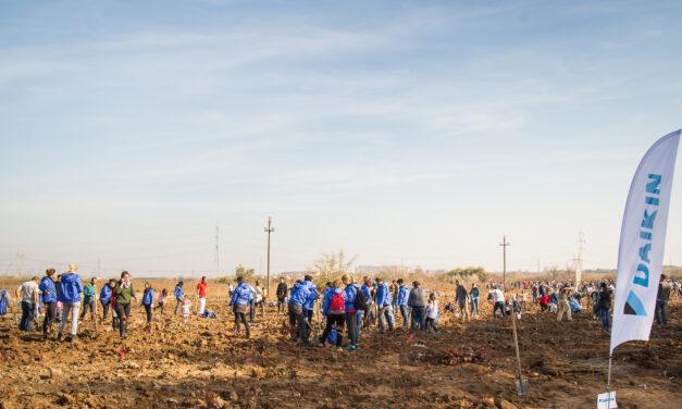 Daikin România contribuie la un viitor mai verde prin acțiuni de împădurire