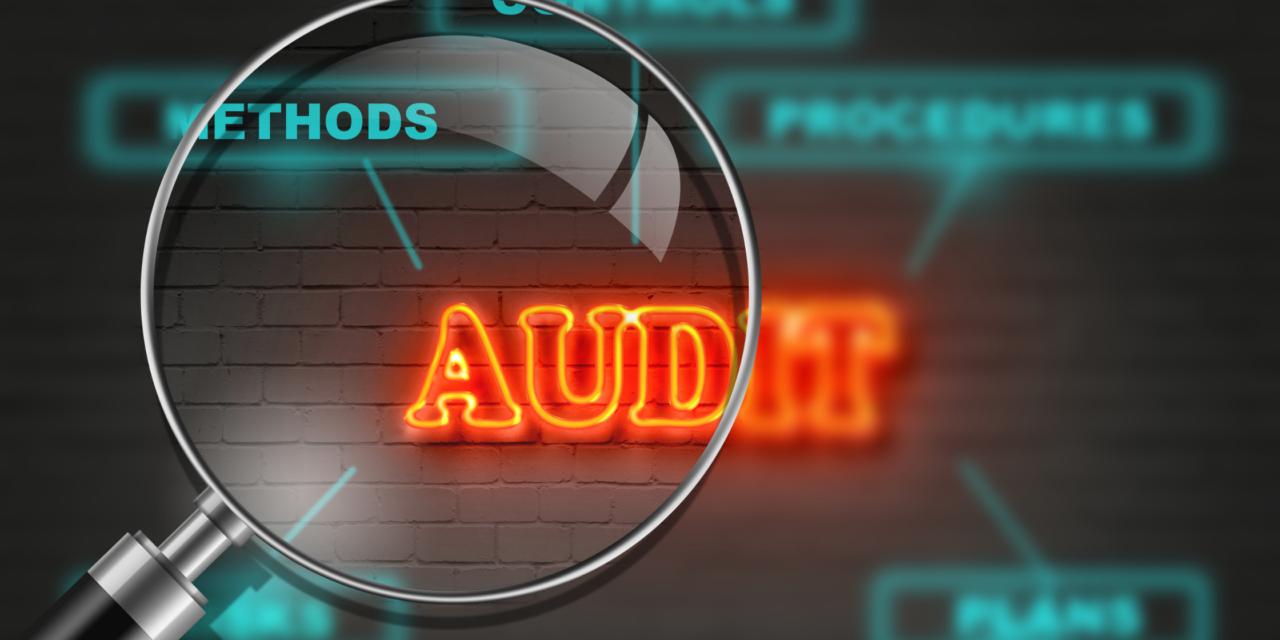 Auditul site-ului companiei – instrument pentru strategia de marketing online