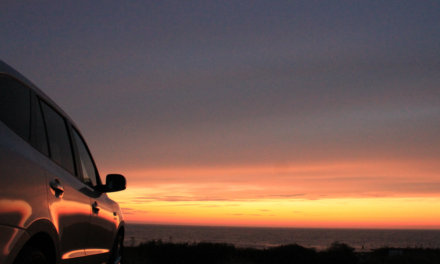 Hyundai, parteneriat cu BBC Future Planet pentru promovarea noilor mașini ecologice